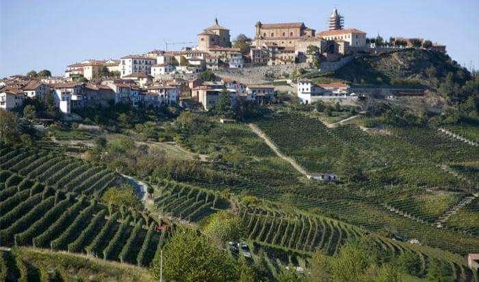 Italy, Piedmont, La Morra, Vineyards