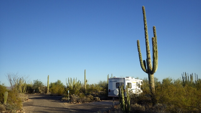 Organ Pipe Cactus National Park Camping