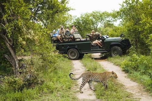 A Few Helpful Safari Adventure Packing Tips