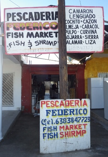 Fresh Shrimp Outlets in Puerto Penasco Mexico