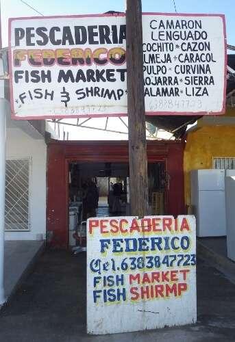 Fresh Shrimp Outlets in Puerto Penasco Mexico