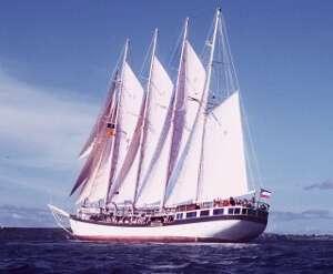 THE POLYNESIA