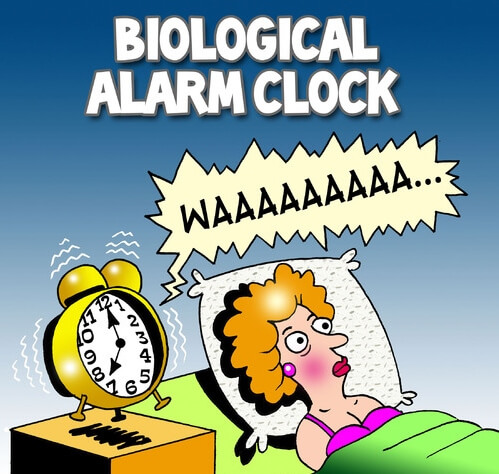 Biological Alarm Clock