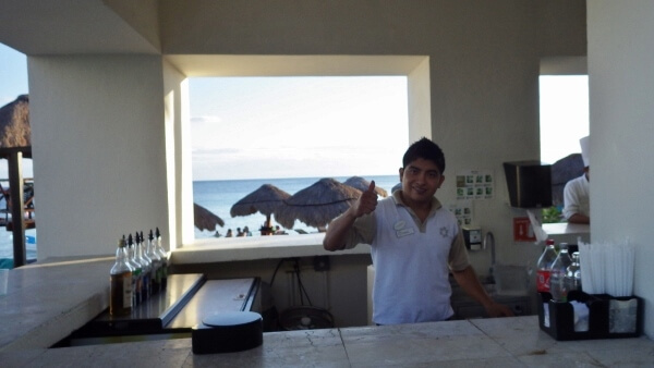 All Inclusive Resort Bartender