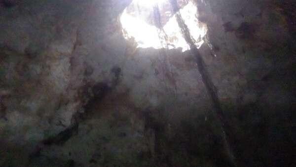 Cenotes Dos Ojos Bat Cave