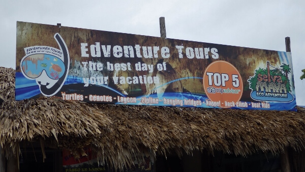 A Look At My Edventure Snorkel Tours Review