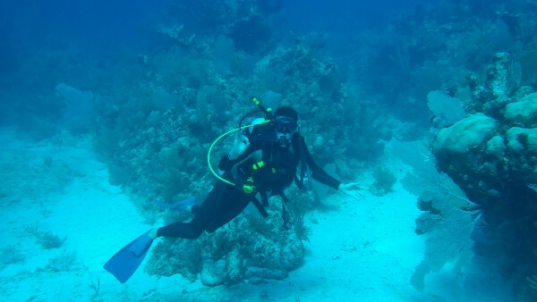 Mexidivers Reef Diving