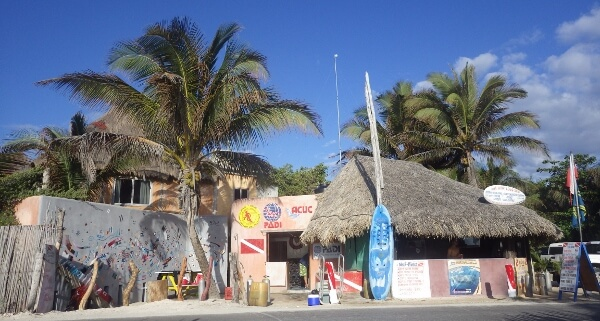 Diving In Tulum Mexico With Mexidivers Review