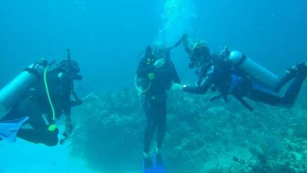 Inexperienced Scuba Diver Mexico
