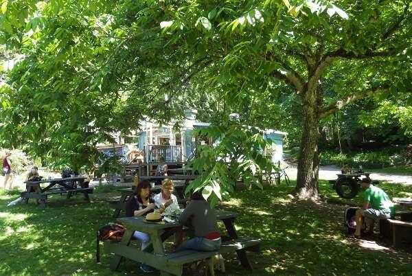 Fergie's Café Picnic Area