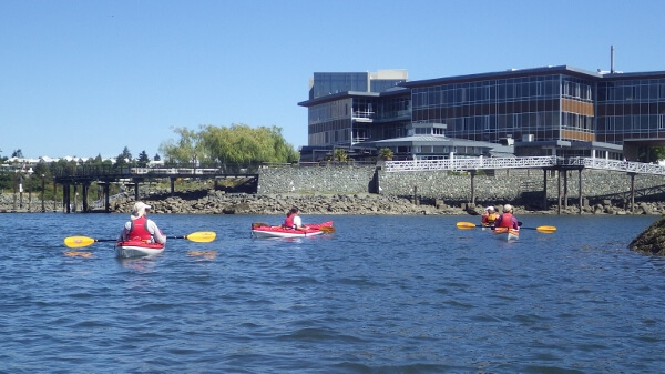 Ocean River Adventures Kayak Tour