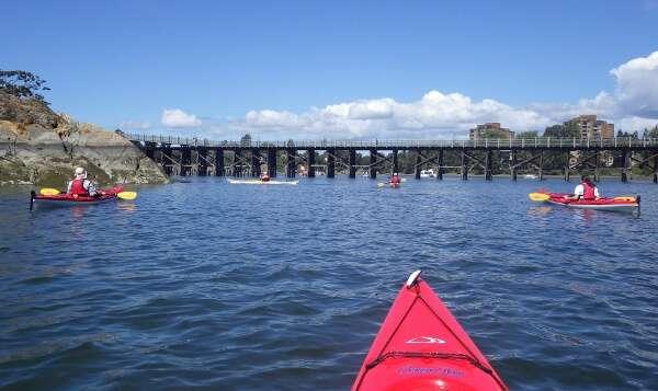 Ocean River Sports Kayak Tour
