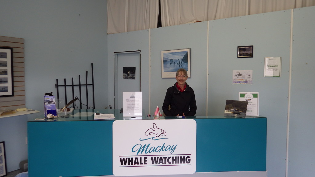 Mackay Whale Watching Tours