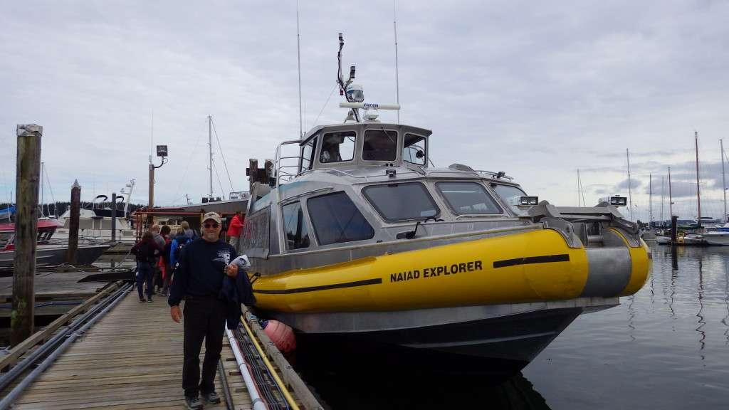Naiad Explorer Makay Whale Watching Tours