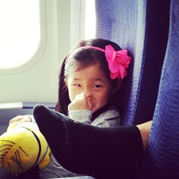 Air Travel Hygiene