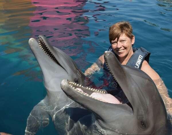 Delfiniti Dolphin Swimming Ixtapa