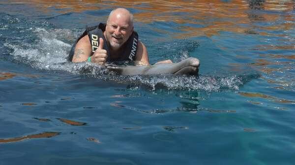 Delfiniti Swim With Dolphins