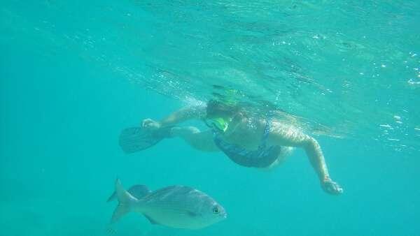 Mero Adventure Snorkeling Tour Ixtapa