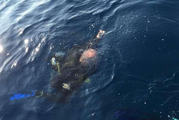 Scuba Diving Zihuatanejo Mexico