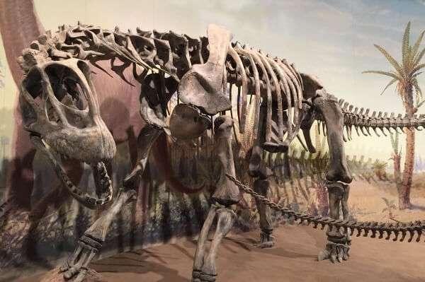 The Royal Tyrrell Dinosaur Exhibit