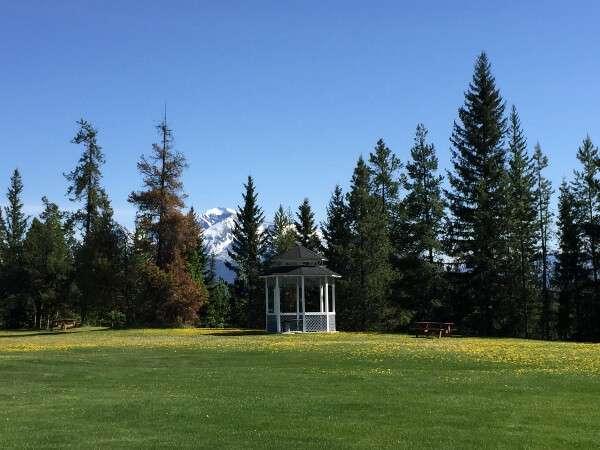 Valemount Pines BC Camping