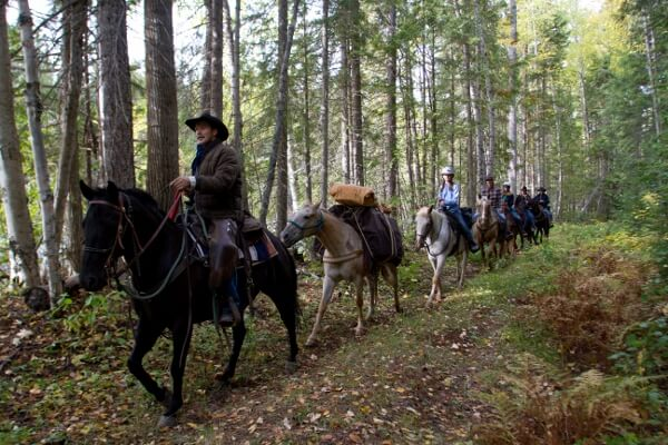 Experience Wells Gray Trail Rides in BC