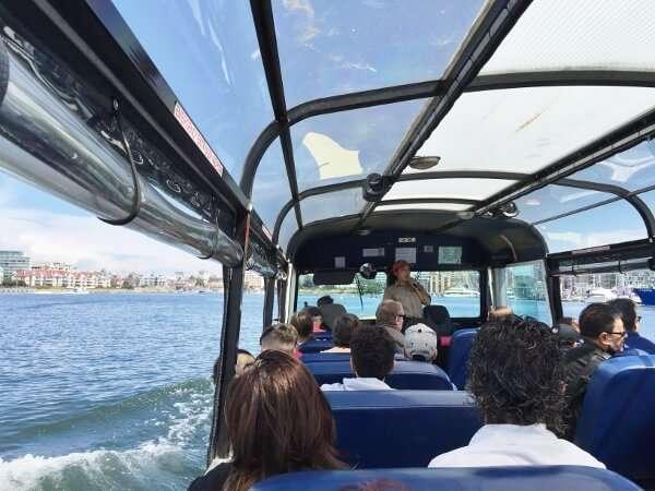 Victoria Hippo Boat Tour