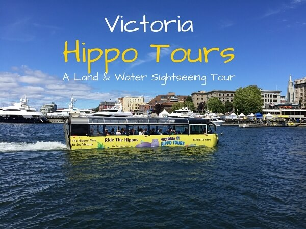 Experience The Victoria Hippo Tours
