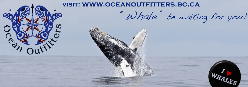 ocean-outfitters-banner