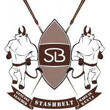StashBelt Logo