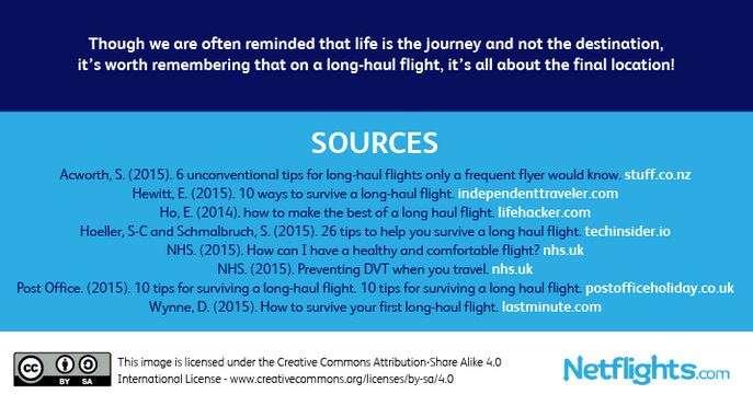 netflights-infographic