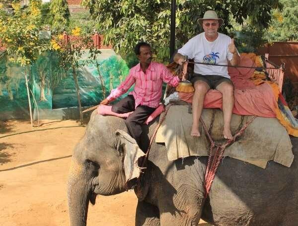 Eleday Elephant Ride