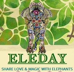 Eleday Logo