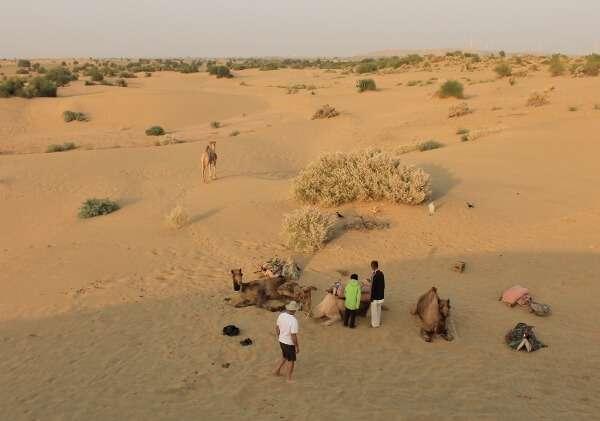 Hotel Mirage Jaisalmer Camel Safari Camping