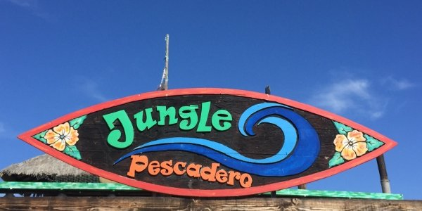 Jungle Pescadero Sign