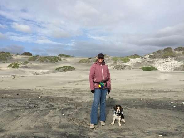 Lazaro Cardenas Beach Dunes