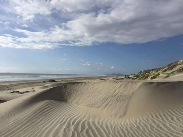 Lazaro Cardenas Mexico Beach Dunes