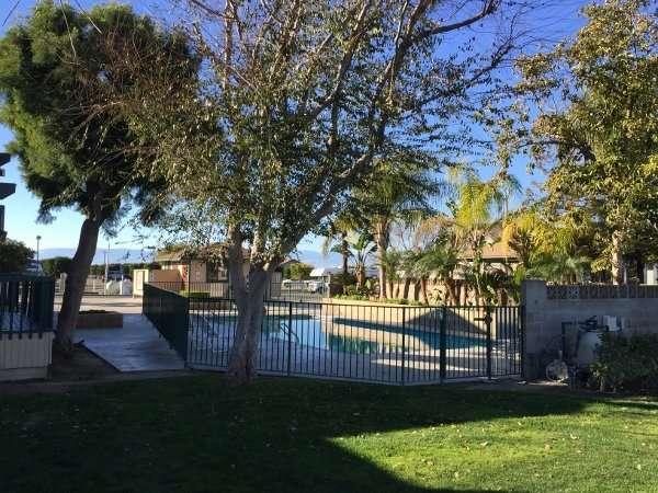 Orange Grove RV Park Heated Pool