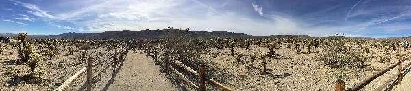 Joshua Tree National Park Panorama View