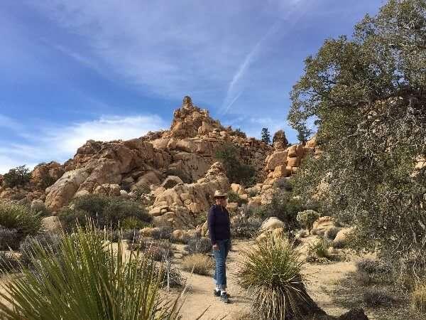 Joshua Tree National Park Walking Trails