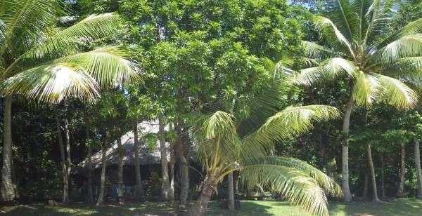 Survivor Television Series Beach Hut - Vanuatu