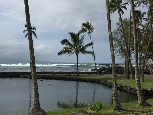 Black Sand Beach Hilo Hawaii