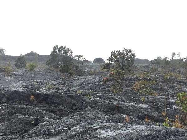 Hawaii Volcanoes National Park Molten Lava Field
