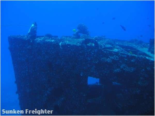 Atlantis Submarine Adventure Waikiki