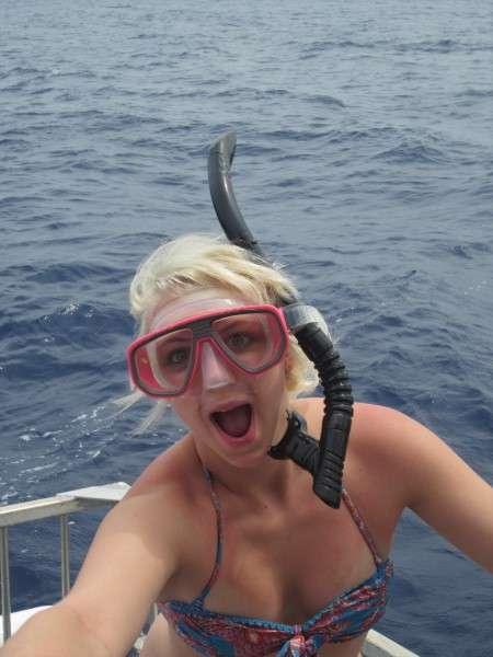Shark Cage Swim Tour Hawaii