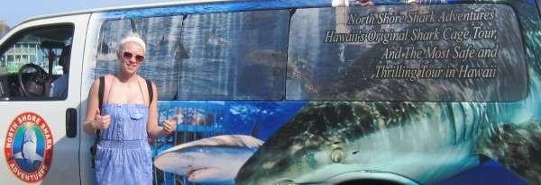 Shark Viewing Adventure Waikiki