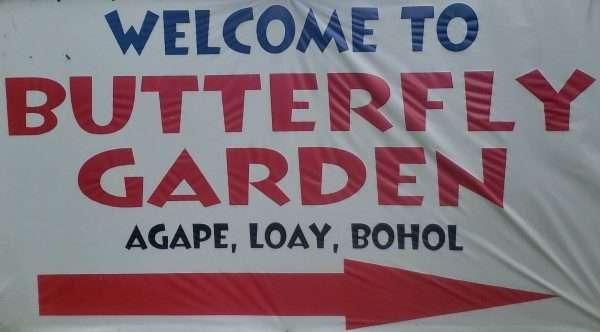 Bohol Butterfly Garden
