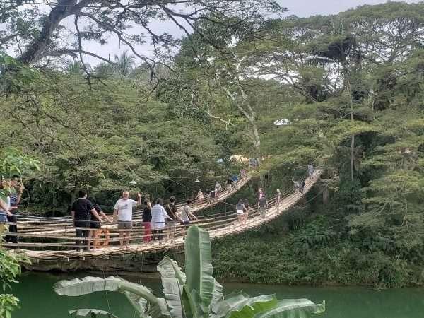 Sevilla Bamboo Twin suspension bridge
