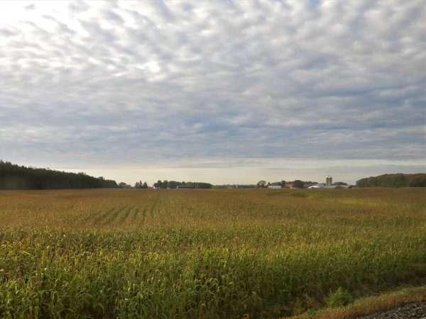Quebec Farm Land