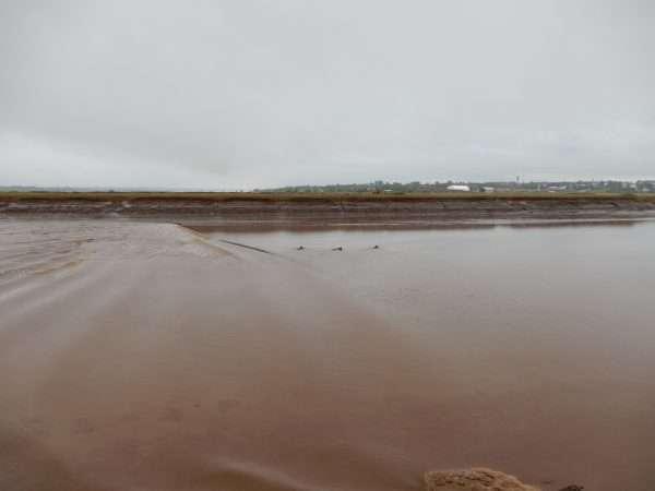 Tidal Bore Moncton New Brunswick